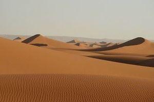 Trang trại năng lượng gió và mặt trời làm sa mạc mưa nhiều