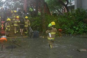Bão Mangkhut khiến gần 70 người thiệt mạng