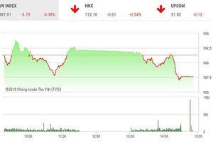 Phiên chiều 17/9: VNM và TCB không cứu nổi thị trường