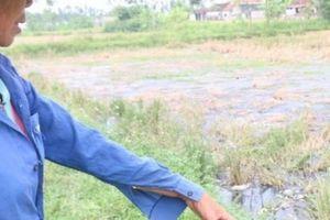 Nghệ An: Làng quê bị ô nhiễm nặng từ nước thải làng nghề bún, bánh