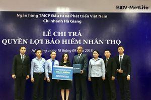 BIDV MetLife chi trả hơn 650 triệu VND cho khách hàng tại Hà Giang