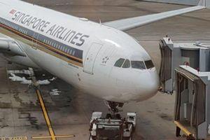 Máy bay Singapore đi TP. HCM tông ống lồng