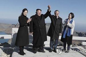 Ông Kim Jong-un tặng Tổng thống Hàn Quốc… 2 tấn nấm