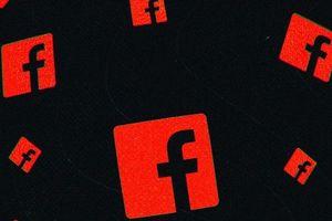 Facebook có nguy cơ bị EU trừng phạt vì tội 'ngoan cố'