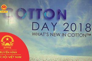 NGÀY HỘI COTTON DAY 2018