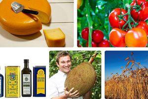 Những quốc gia xuất khẩu thực phẩm hàng đầu thế giới