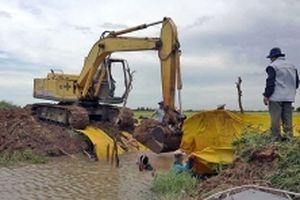 Mực nước sông Cửu Long đang lên, nguy cơ ngập lụt vùng trũng thấp