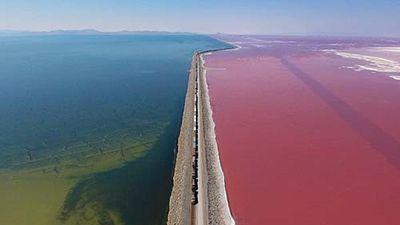 Toàn cảnh hồ nước chuyển sang màu hồng rực rỡ ở Mỹ