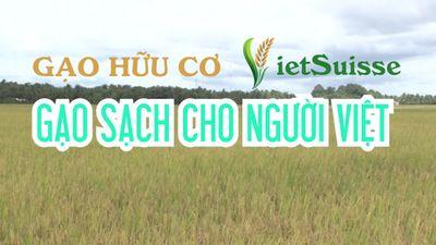 Gạo hữu cơ VietSuisse - Gạo sạch cho người Việt