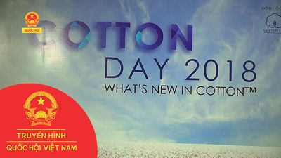 NGÀY HI COTTON DAY 2018