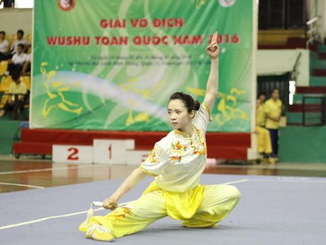 Ha Noi vo dich giai vo dich wushu toan quoc nam 2016 - Anh 1