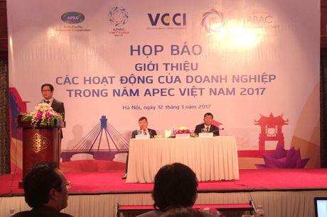 Nhieu co hoi truc tiep cho doanh nghiep trong Nam APEC Viet Nam 2017 - Anh 1
