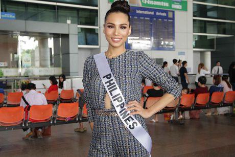 Hoa hau cac nuoc do xo ve Viet Nam chuan bi'Miss Grand International 2017' - Anh 2