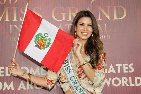 Hoa hau cac nuoc do xo ve Viet Nam chuan bi'Miss Grand International 2017' - Anh 4