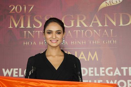 Hoa hau cac nuoc do xo ve Viet Nam chuan bi'Miss Grand International 2017' - Anh 5