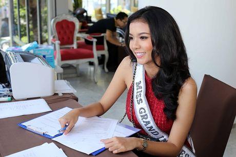Hoa hau cac nuoc do xo ve Viet Nam chuan bi'Miss Grand International 2017' - Anh 6