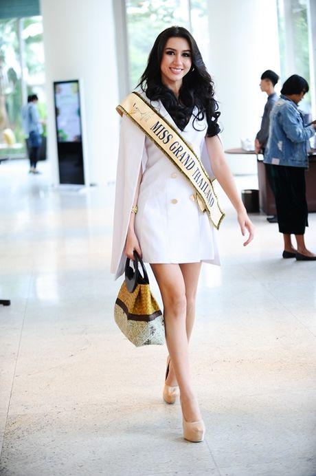 Hoa hau cac nuoc do xo ve Viet Nam chuan bi'Miss Grand International 2017' - Anh 7