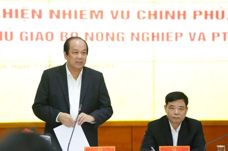 DN to voi to cong tac cua Thu tuong bi Bo Y te hanh - Anh 1